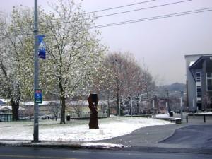Rainer Valley Post