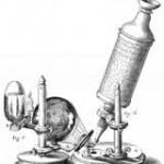 2. microscope